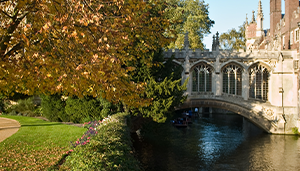 Cambridge named as top UK city for finding work